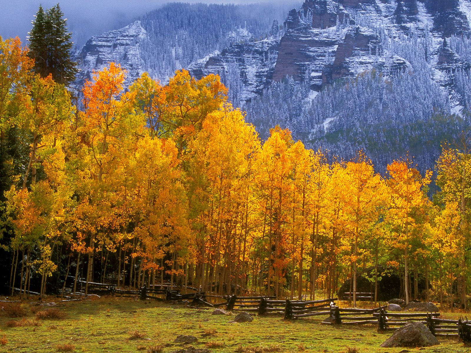fall in the high country colorado picture fall in the