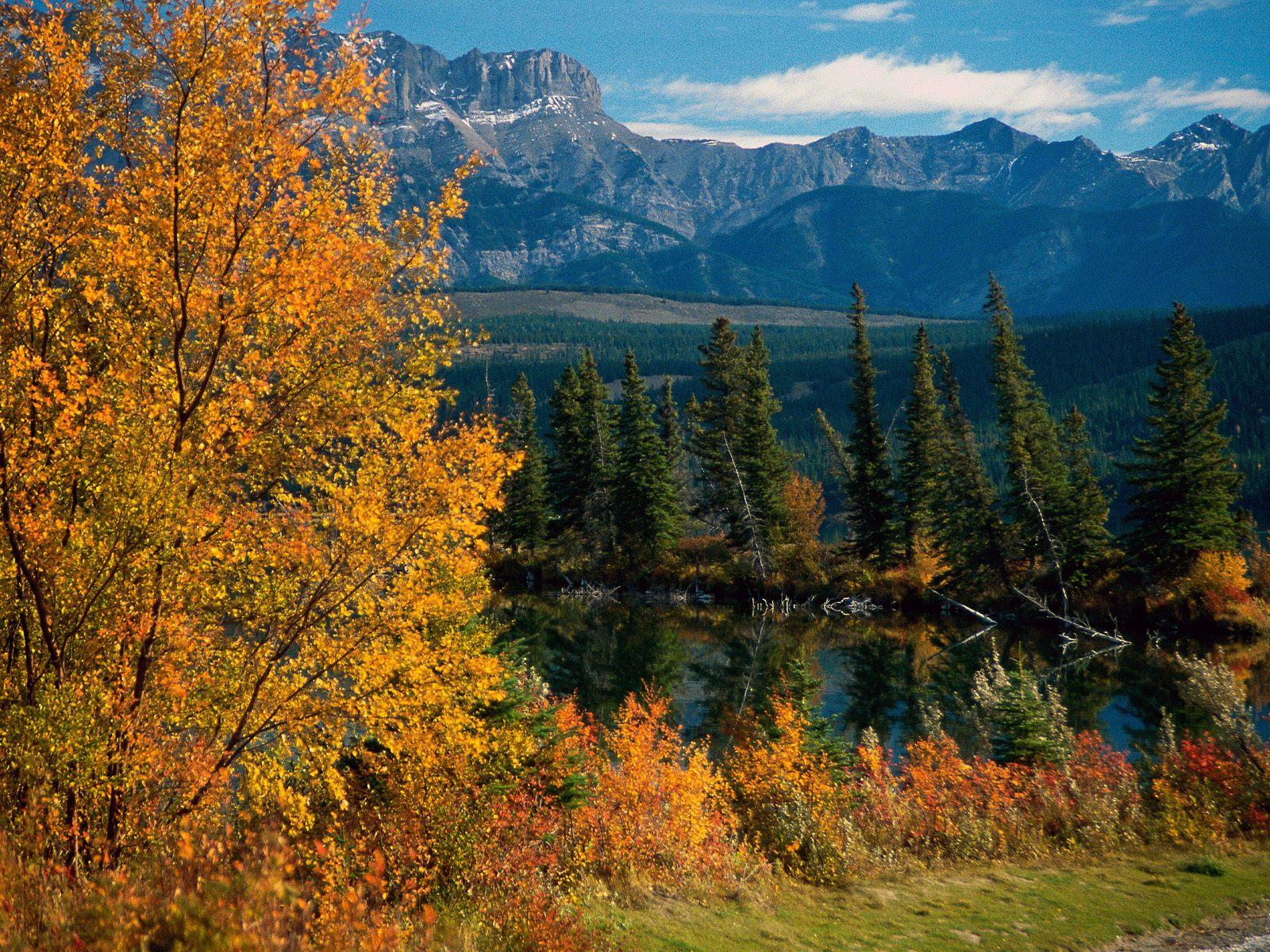 nationalpark alberta kanada - photo #31