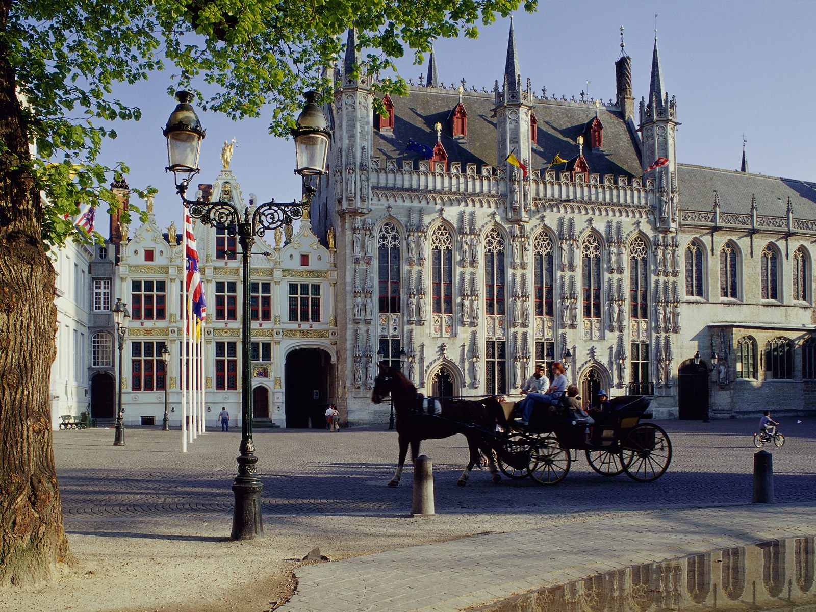 Horse Drawn Carriage Town Hall Brugge Belgium