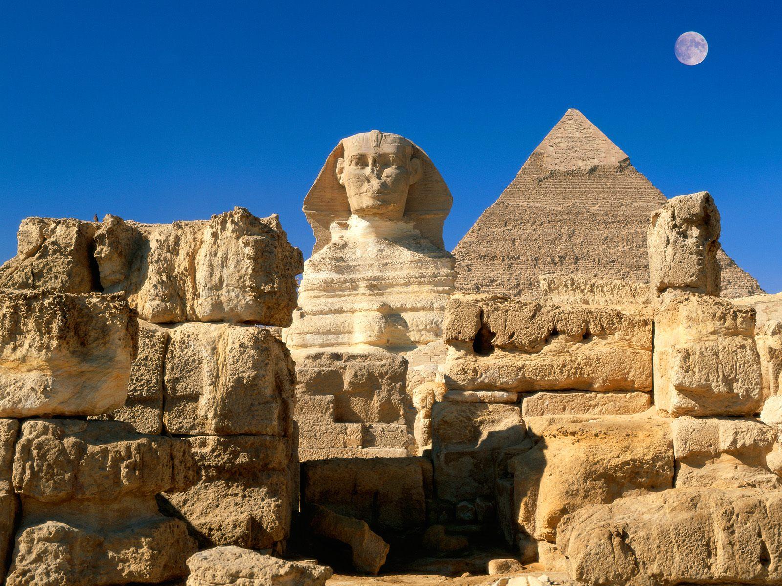sphinx golden treasures area rug