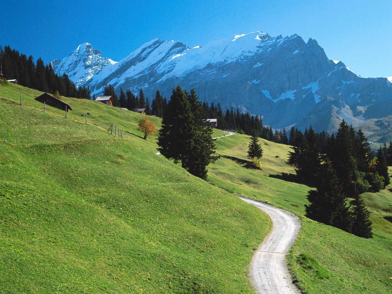 Bernese Oberland Switzerland picture, Bernese Oberland ... Bernese Alps, Switzerland