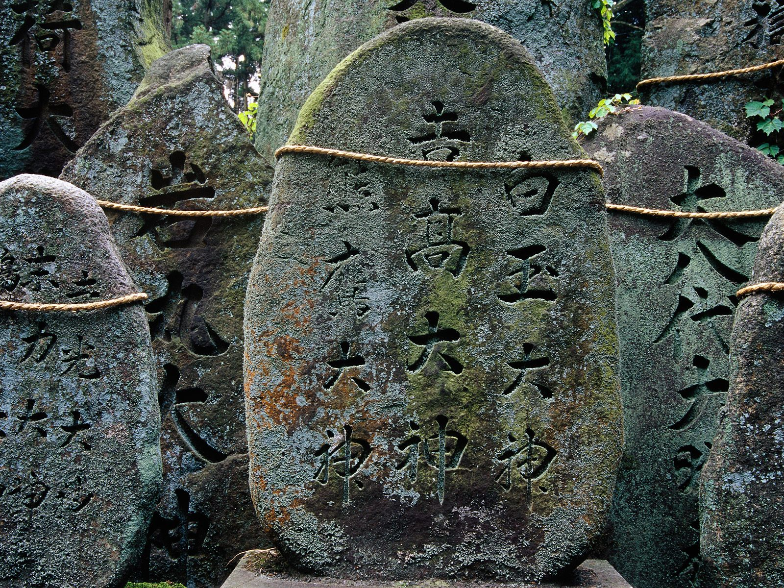 Fushimi-inari Taisha Shrine Kyoto Japan picture, Fushimi-inari Taisha Shrine ...
