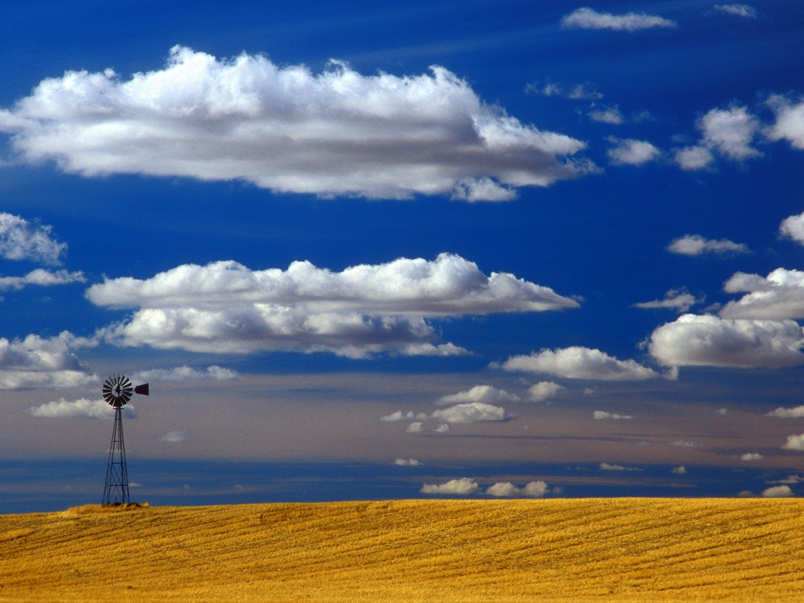 Windmill Eastern Washington picture, Windmill Eastern Washington photo ...