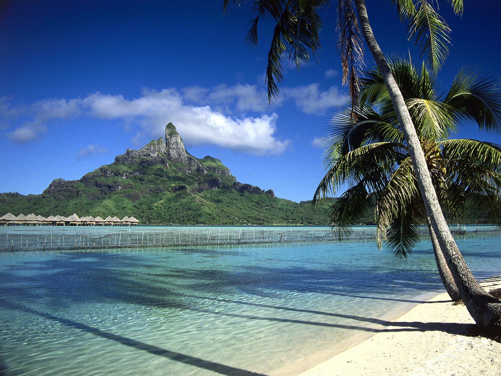 Bora Bora Shoreline French Polynesia