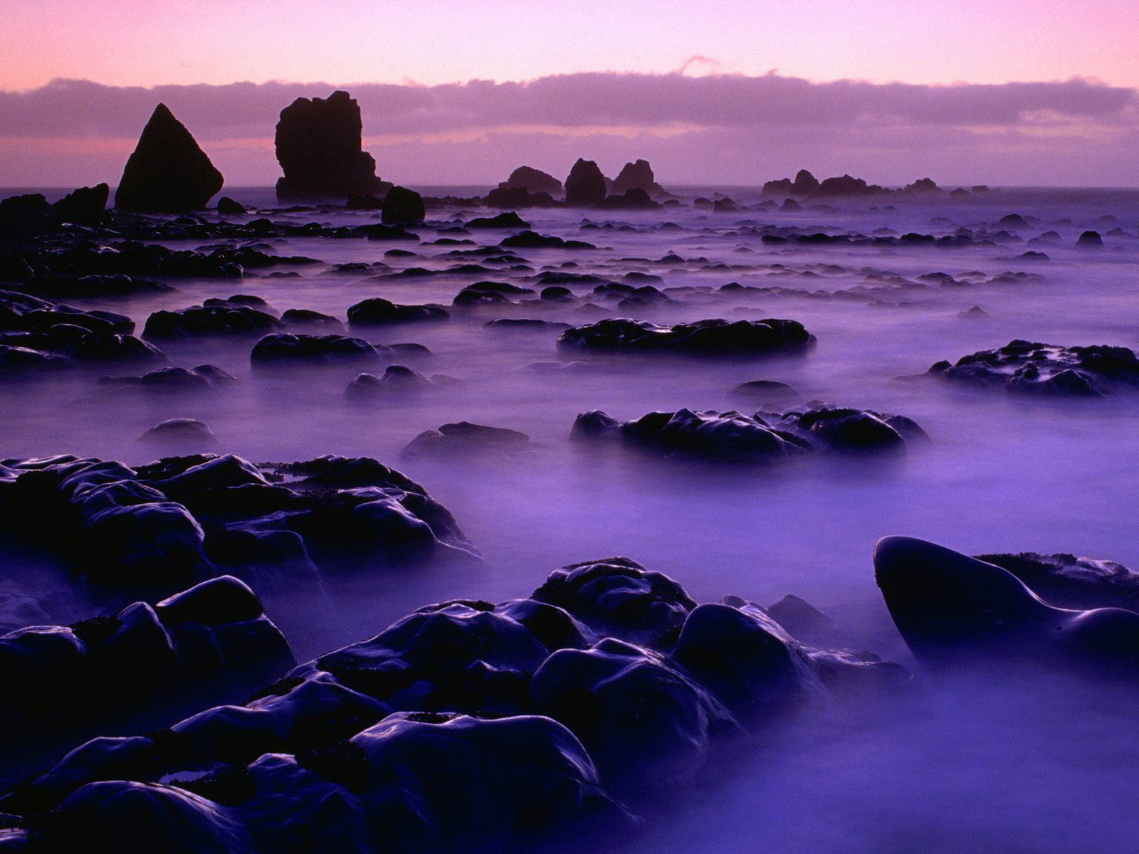 Rising Tide at Sunset New Zealand