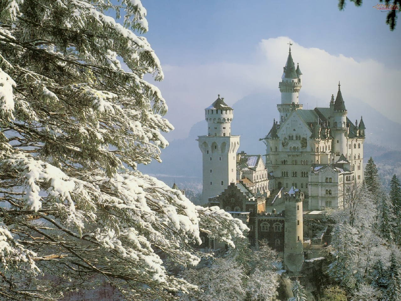 Neuschwanstein Castle Bavaria Germany - forest snow