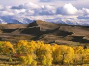 Dunes and Fall Color Colorado