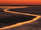 Wadden Island Estuary At Sunset The Netherlands