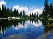Balsam Lake Mount Revelstoke National Park British Columbia Canada
