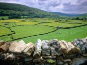 Muker Swaledale Valley Yorkshire United Kingdom