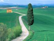 Country Road Tuscany Italy