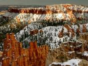 Ice Cold Hoodoos Bryce Canyon National Park Utah