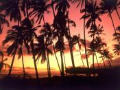 Hawaiian Sunset Hawaii