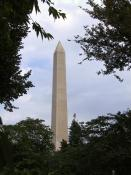 washington Monument through trees