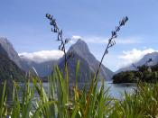 Milford Sound Mitre Peak New Zealand