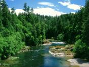 Umpqua River Douglas County Oregon