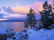 Colors of Winter Lake Tahoe