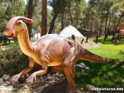 Dinosaur in turkey